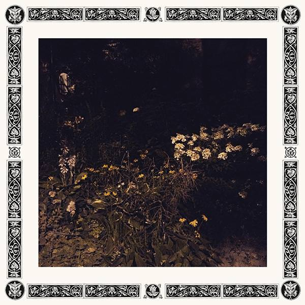 Pale Bloom (Lp)