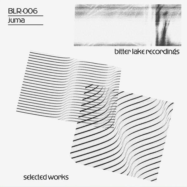 Selected Works (2LP)