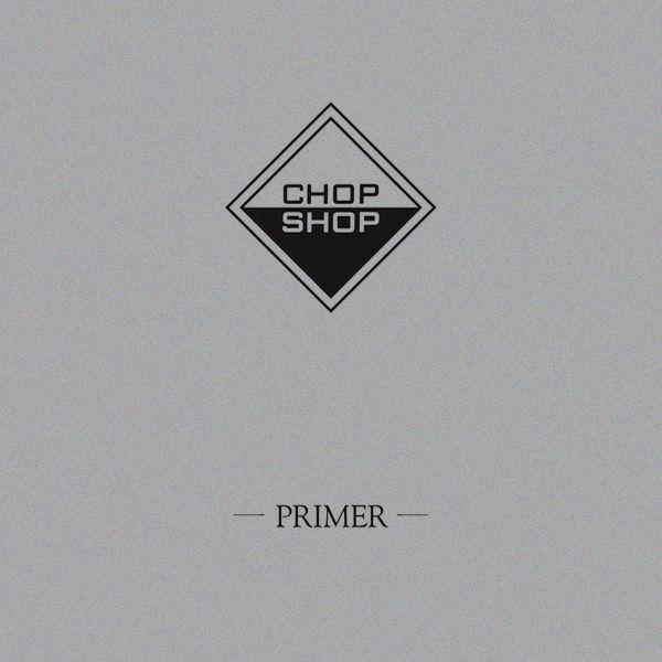 THE PRIMER (2LP)