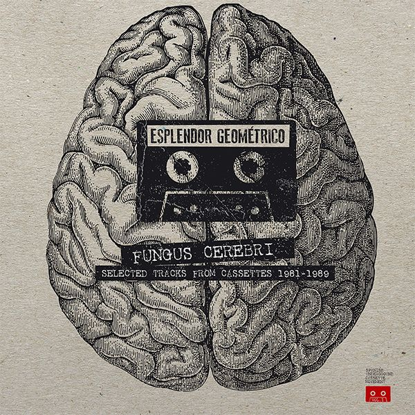 FUNGUS CEREBRI (SELECTED TRACKS FROM CASSETTES 1981-1989) (2LP)