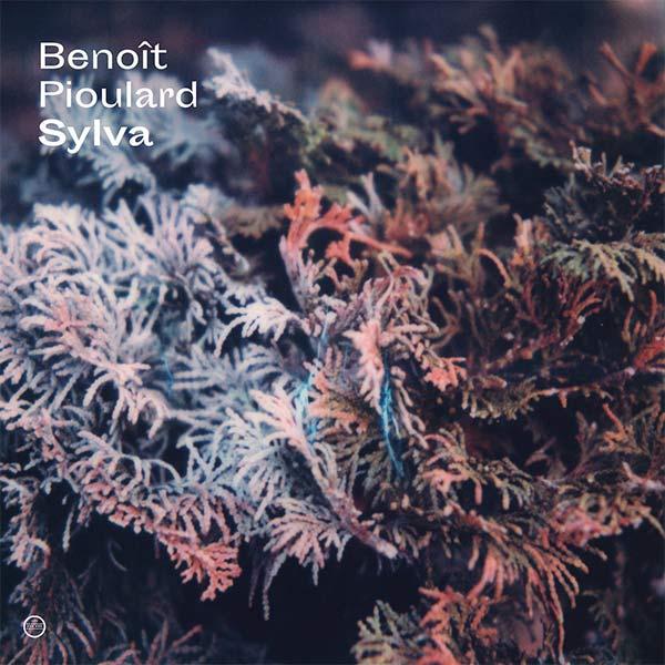 SYLVA (LP)