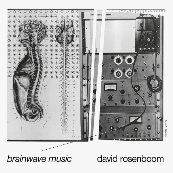 BRAINWAVE MUSIC (2LP)