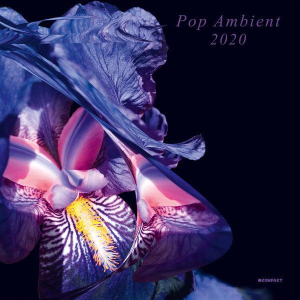 POP AMBIENT 2020 (2LP)