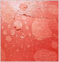 seymour wright - sebastian lexer - Blasen