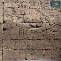 Egypt Strut