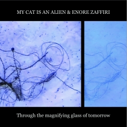 my cat is an alien - enore zaffiri - Through The Magnifying Glass Of Tomorrow