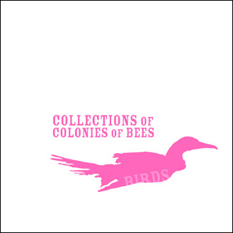 collections of colonies of bees - Birds