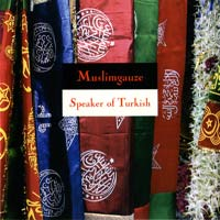 muslimgauze - Speaker of Turkish