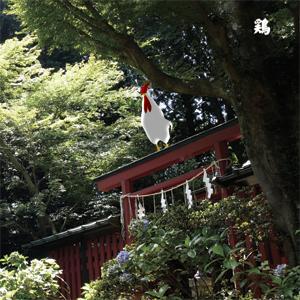 13 Japanese Birds Vol.10